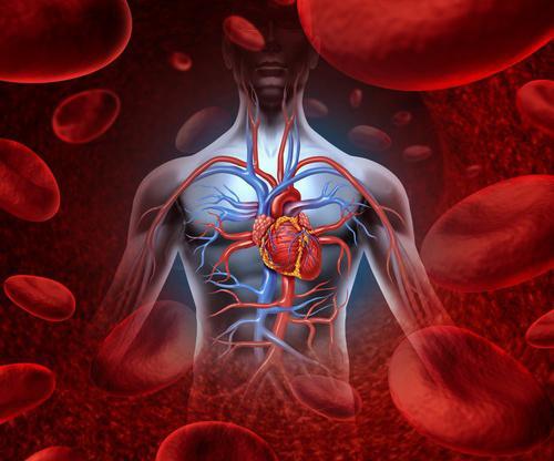 543104 - Que faire des premiers soins, causes et symptômes des douleurs cardiaques