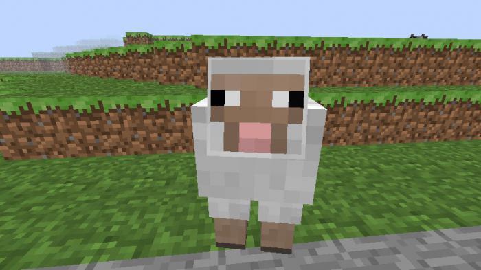 Как сделать овец в minecraft фото 701