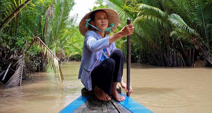 фотографии туристов во вьетнаме как корень, так