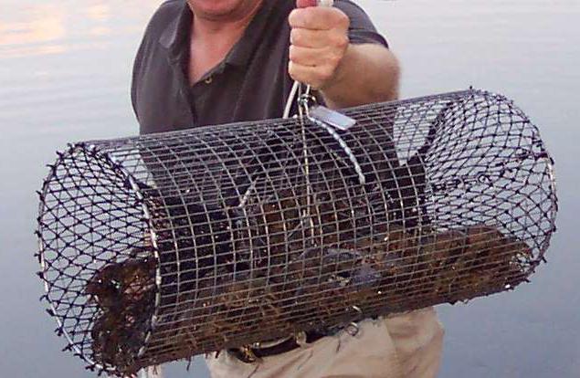Поделки своими руками для рыбалки видео