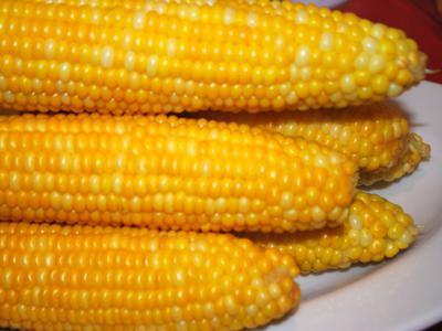 cook corn in a Panasonic crock-pot