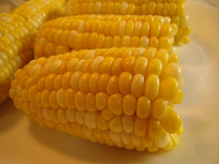 how to cook corn in a slow cooker
