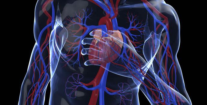 статины снижения холестерина крови