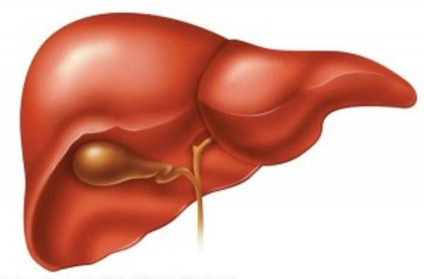 causes of human liver enlargement