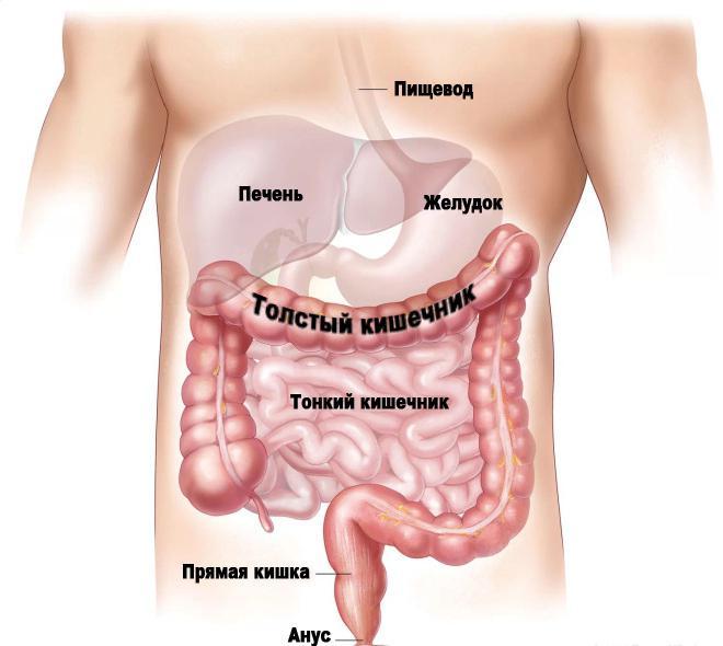 гидроколонотерапия кишечника