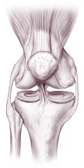Изображение - Очень болят коленные суставы что делать 590913