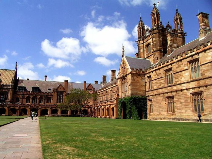 university faculties