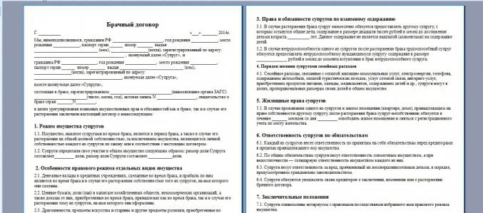 проект брачного договора пример - фото 5