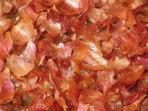 Onion Husk Recipes in Traditional Medicine