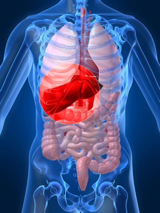 болезнь гепатит с