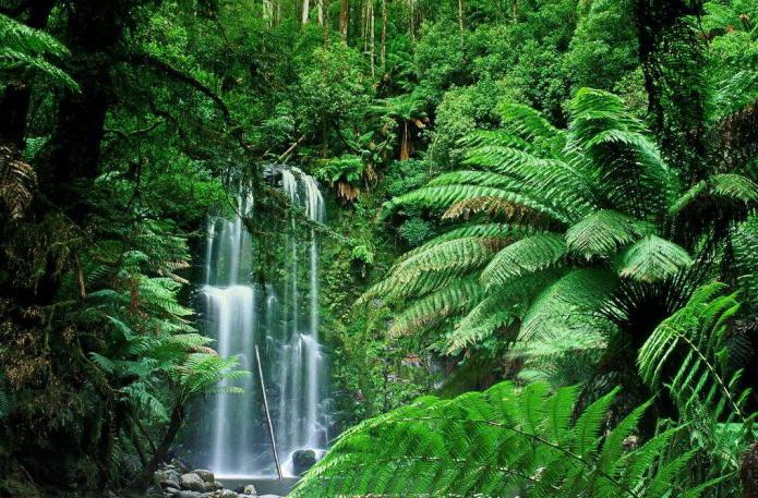 what are the natural areas in africa