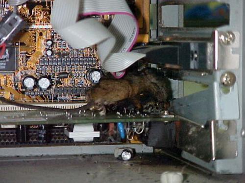 motherboard power