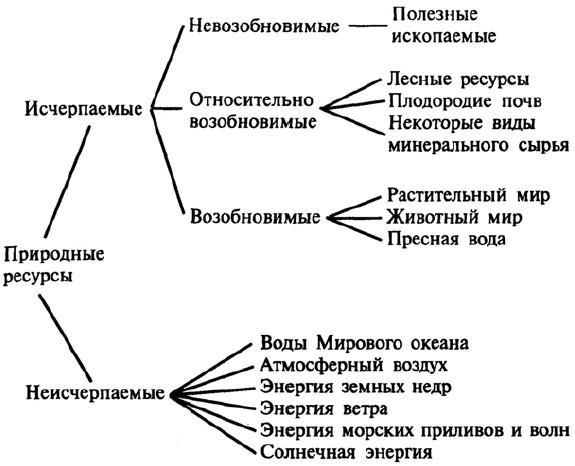 Схема виды природных ресурсов фото 242