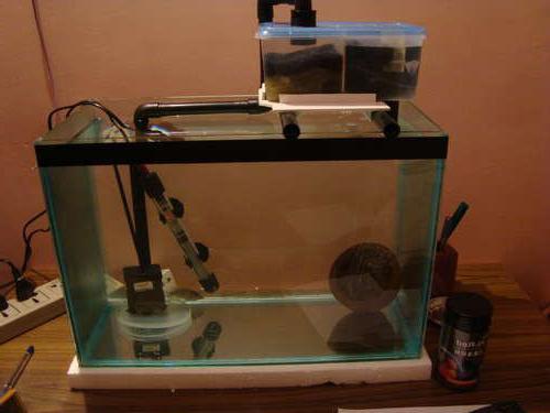 Из чего сделать внешний фильтр для аквариума своими руками фото 621
