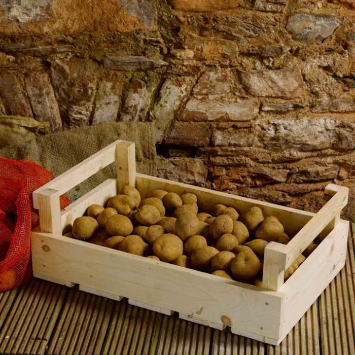 оптимальная температура для хранения картофеля