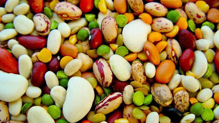 Декоративные растения семейства бобовые