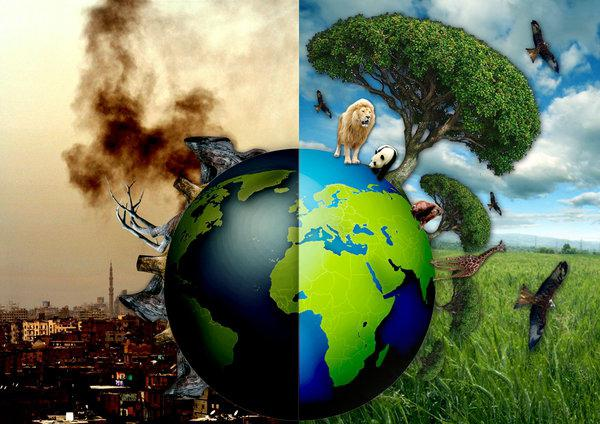 overpopulation a cause of war crime pollution and others