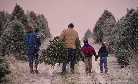 Рождественские традиции в англии