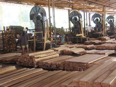 development of the woodworking industry