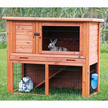 cage sizes for rabbit scrofula