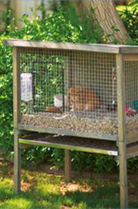 rabbit cage sizes