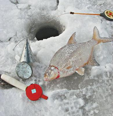 Winter fishing for bream on a rocker
