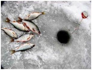 Equipment for winter fishing for bream