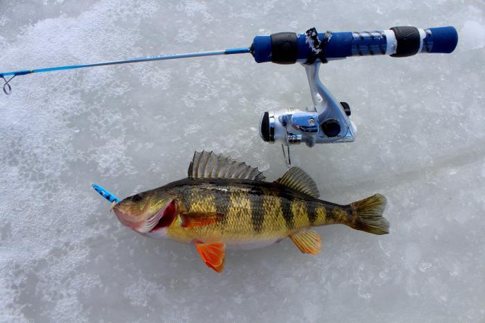 зимняя рыбалка на течении снасти