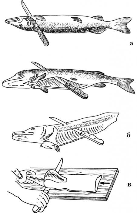 Разделка рыбы схема