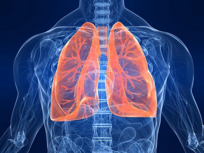 Как лечить верхние дыхательные пути лекарствами