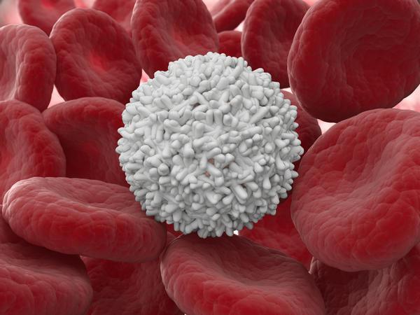 prichina-povishennih-leykotsitov-v-sperme