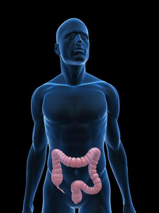 очищение кишечника перед диетой лекарство