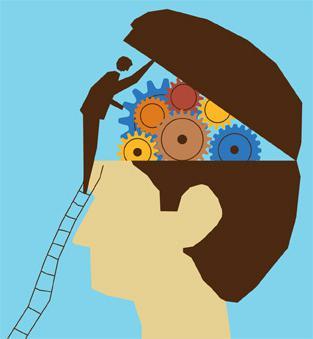 функции переднего мозга