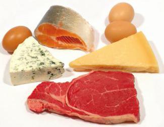 белковая пища список продуктов для похудения диета