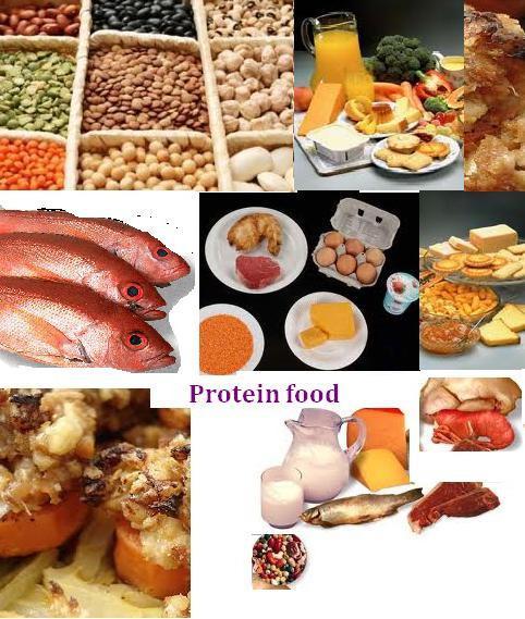 белковая пища список продуктов для похудения фото