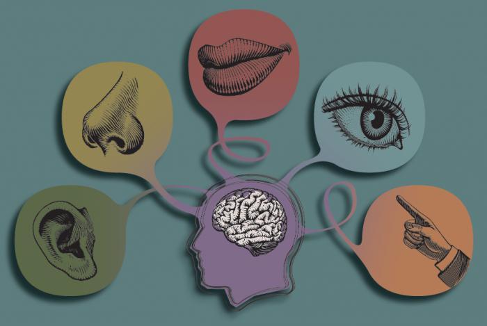 Виды психологии