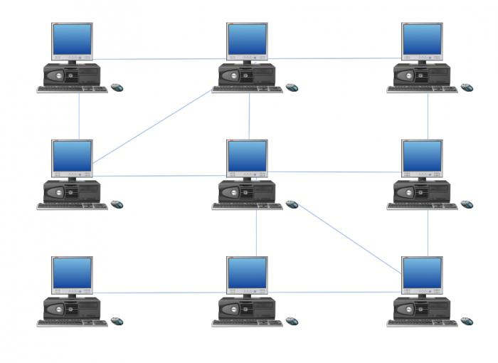 local computer network topology