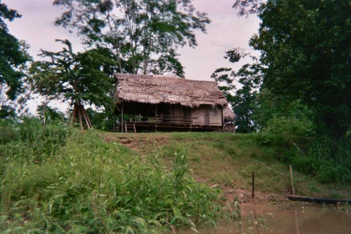 Их дом - река амазонка.