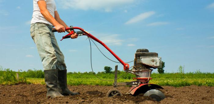 cultivator to give