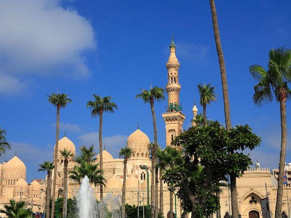 образец заполнения египетской визы