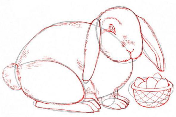 Фото как нарисовать кролика поэтапно