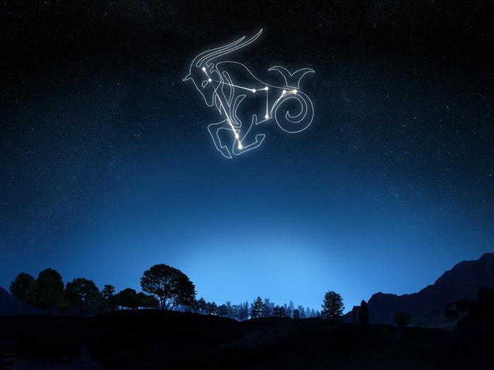 stars in the constellation Capricornus