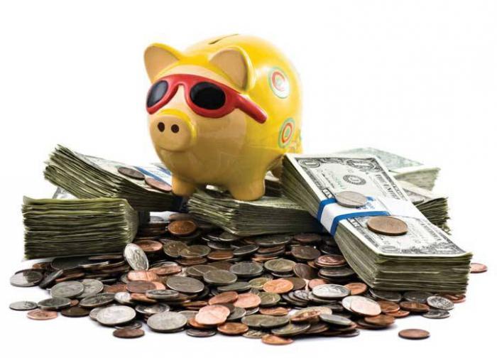 concept of budget surplus