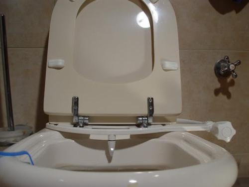 installation of hygienic shower in the toilet