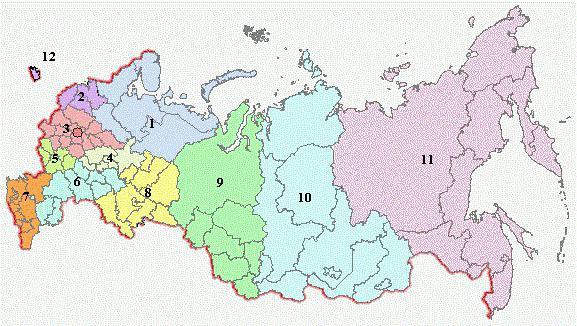 географическое положение лесов России