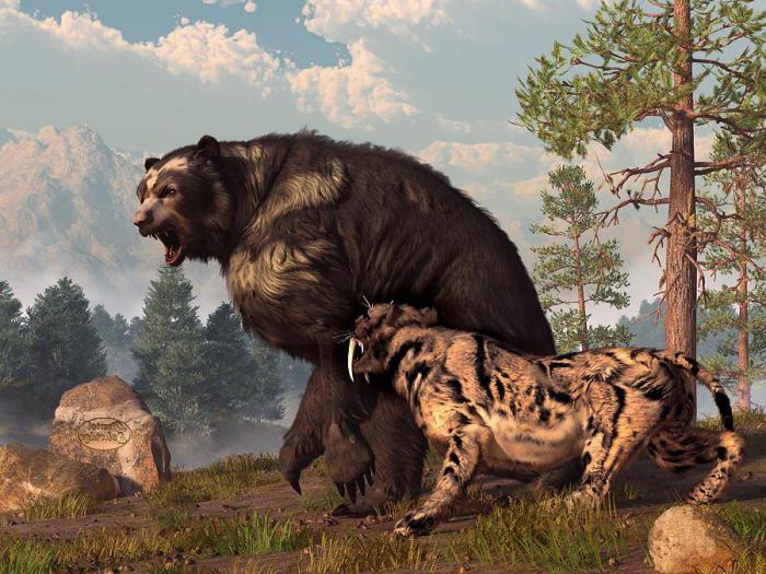 доисторические хищники медведь