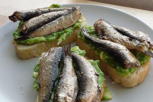 Горячий бутерброд в микроволновке: как приготовить (рецепты)