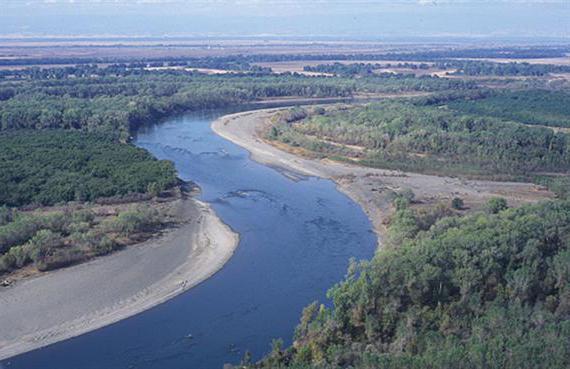 притоки реки волга