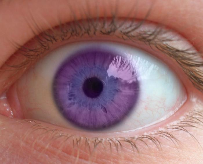 Самый редкий в мире цвет глаз