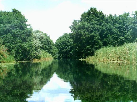форсирование реки днепр